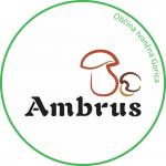 Ambrus