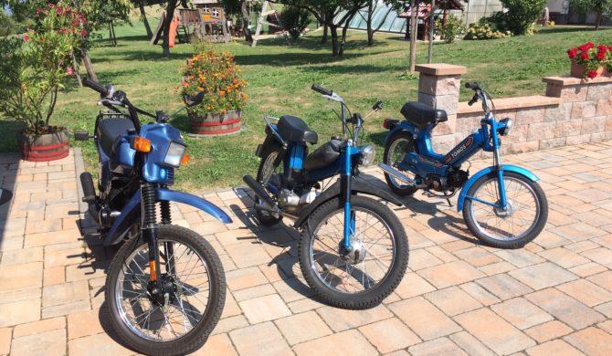 Rent TOMOS moped5