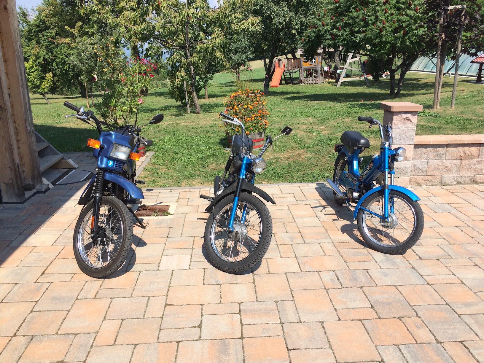 Rent TOMOS moped6